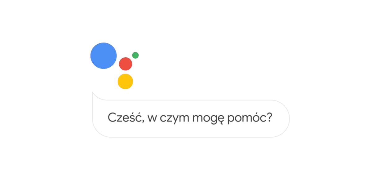 Asystent Google po polsku