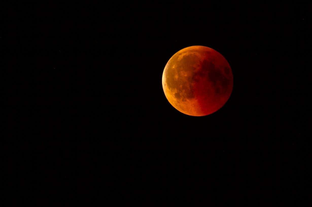 Wilcza pełnia księżyca