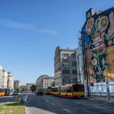 Nowy mural w Warszawie, bo o nim mowa powstanie za sprawą inicjatywy Converse City Forests.